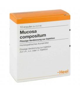 HEEL MUCOSA COMPOSITUM 10 AMPOLLAS