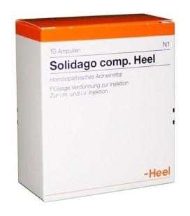 HEEL SOLIDAGO COMPOSITUM 10 AMPOLLAS